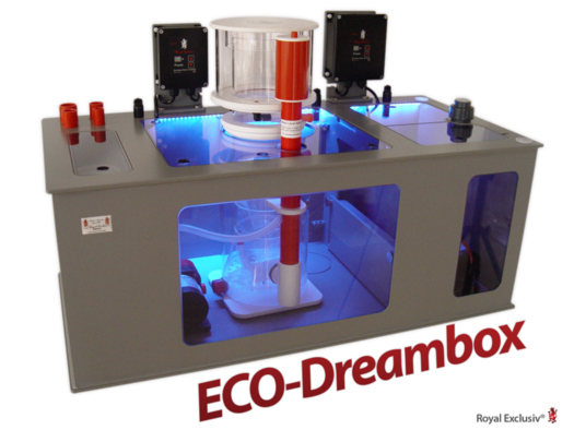 ECO Dreambox