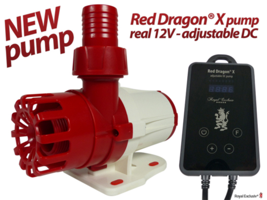 Royal Exclusiv Red Dragon X 12 and 24V